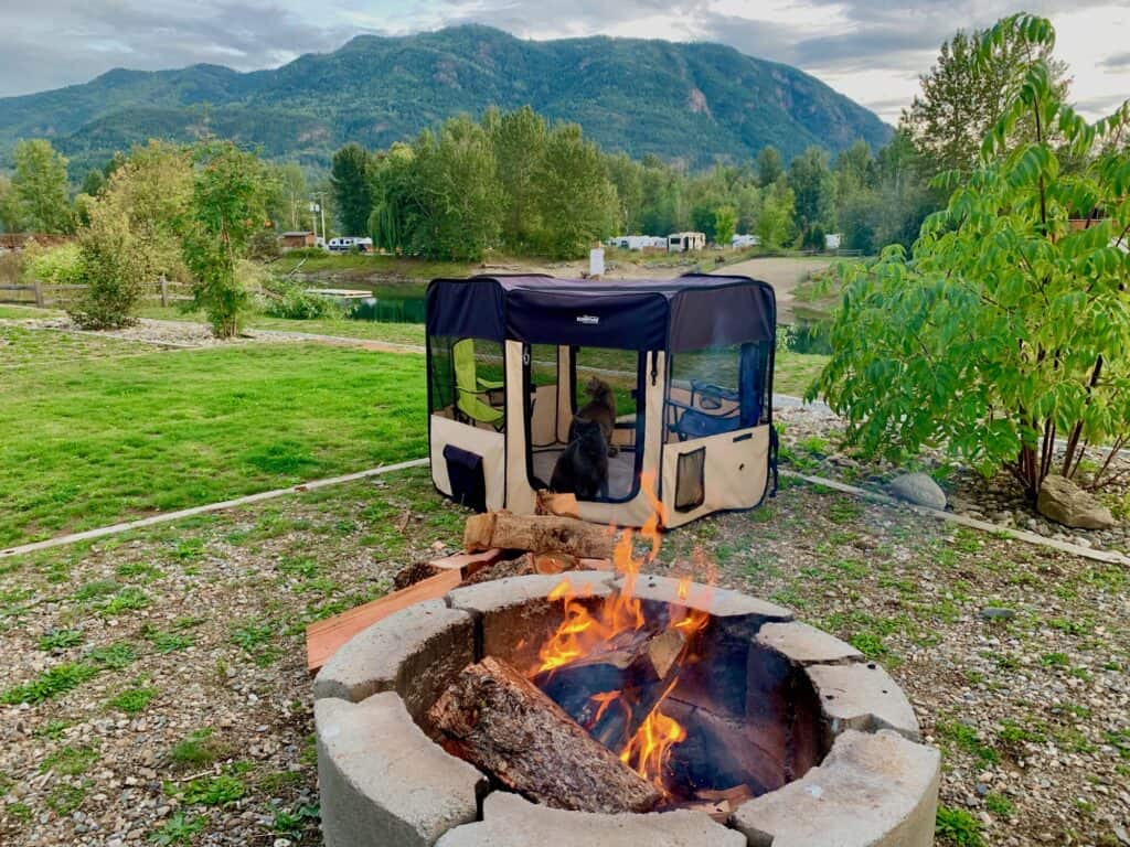 campfire beside enclosure with 2 cats with a water and mountain view in Canada.