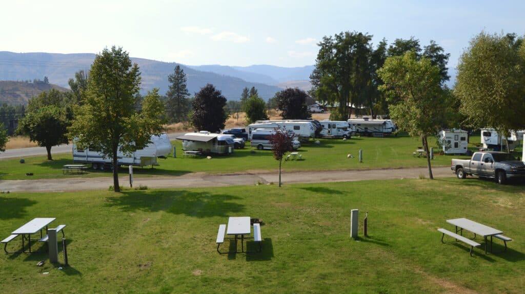 Pine Near RV Park - Photo via website
