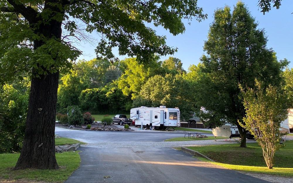 View of campsites with lush trees at Harrison KOA campground.